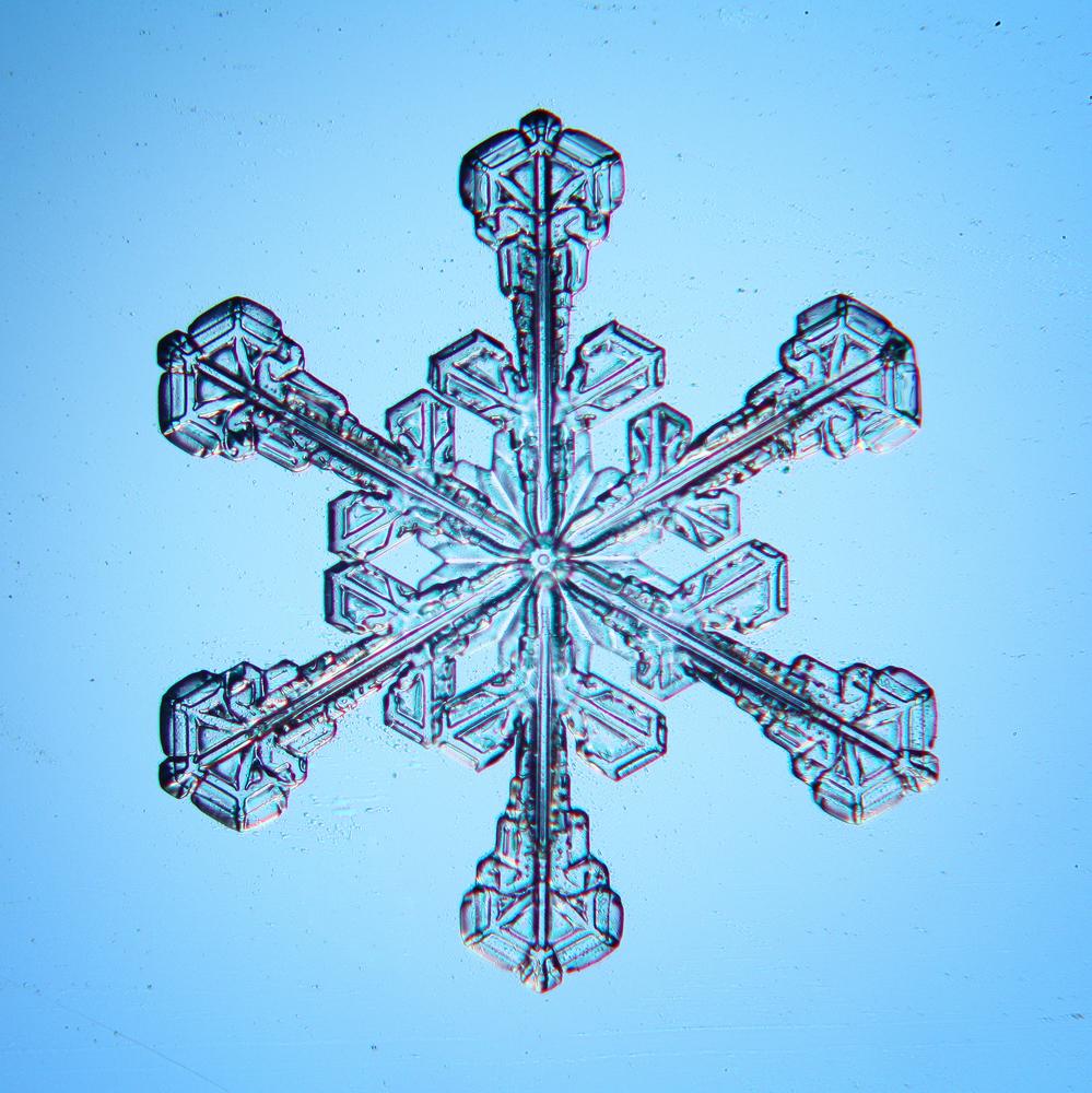 Un singolo cristallo di ghiaccio (Immagine Kichiglin by Shutterstock)