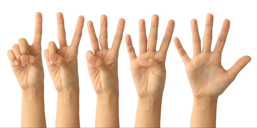 Perché abbiamo cinque dita?