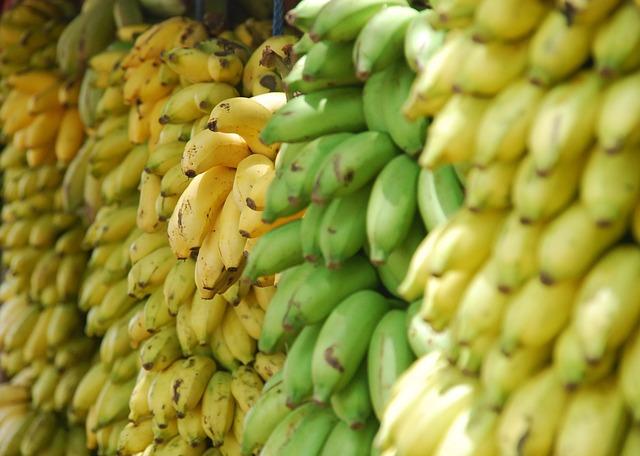 Perché rischiamo di perdere le banane (di nuovo)