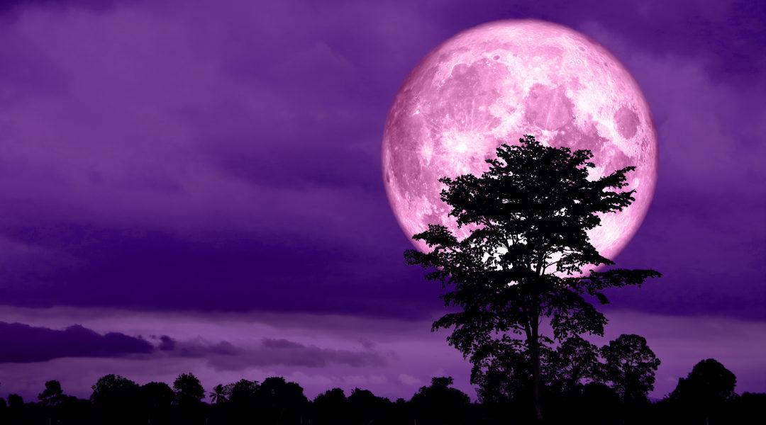 super luna fake
