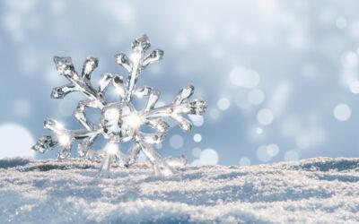 Cristalli di neve ubiquitinati