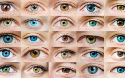 Le chimere hanno gli occhi?